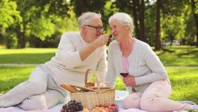 Coppie senior felici che hanno picnic al parco di estate video d archivio