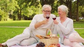 Coppie senior felici che hanno picnic al parco di estate stock footage