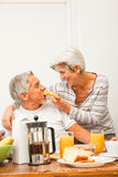 Coppie senior felici che mangiano prima colazione Fotografie Stock Libere da Diritti