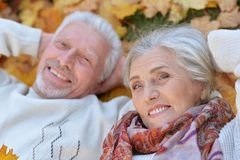 Coppie senior nel parco di autunno Immagini Stock Libere da Diritti