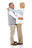 Coppie senior nell'amore Immagine Stock Libera da Diritti