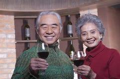 Coppie senior sorridenti che godono del vino, esaminante macchina fotografica Immagine Stock