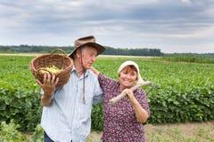 Coppie senior su terreno coltivabile Fotografie Stock Libere da Diritti