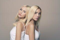 Coppie sexy dei gemelli fotografia stock