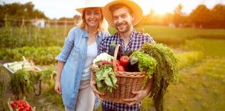 Coppie sorridenti degli agricoltori con la merce nel carrello delle verdure Fotografia Stock
