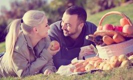 Coppie sorridenti di amore che chiacchierano come avendo picnic Fotografia Stock