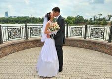coppie sposate recentemente Fotografia Stock