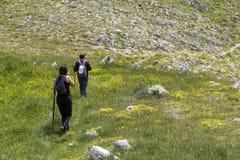 Coppie sulla montagna Immagini Stock Libere da Diritti