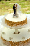 Coppie sulla torta di cerimonia nuziale fotografie stock libere da diritti