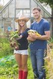 Coppie sveglie che fanno il giardinaggio il giorno soleggiato Immagini Stock Libere da Diritti