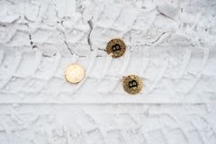 Copprito mynt av guld- bitcoin ligger på snön Inget behövd I vintern på vägen spår av bilar royaltyfri bild
