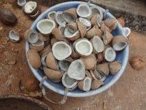 Copra della noce di cocco Immagini Stock Libere da Diritti