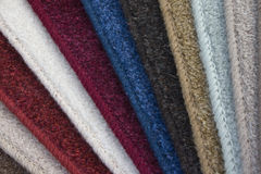 Copra i campioni col tappeto Fotografie Stock