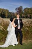Copule de la boda Novia y novio hermosos Apenas merried Cierre para arriba Imagen de archivo libre de regalías