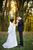 Copule de la boda Novia y novio hermosos Apenas merried Cierre para arriba Foto de archivo