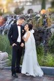 Copule di nozze bello sposo della sposa Merried appena Fine in su Fotografie Stock