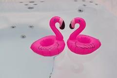 Copuple de flotar el flamenco rosado en bathtubja Fotografía de archivo libre de regalías
