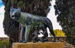 A copy of an ancient bronze statue of the Capitoline she-wolf br stock image