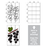 Copy the image using grid. Blackcurrant Stock Photos