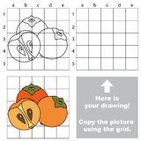 Copy the image using grid. Persimmon Stock Images