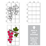 Copy the image using grid. Red currant Royalty Free Stock Photos