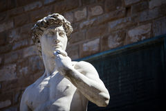 Copy of Michelangelo`s David in Florence Stock Images