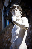 Copy of Michelangelo`s David in Florence Royalty Free Stock Photo