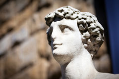 Copy of Michelangelo`s David in Florence Stock Photography
