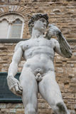 Copy of Michelangelos David on the Piazza della Signorina in Flo Stock Photos