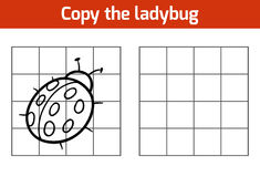 Copy the picture: ladybug Royalty Free Stock Photo