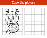 Copy the picture, Ladybug Royalty Free Stock Image