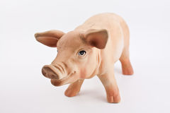 Copy pig statue. Small and cute pig statue on white background Royalty Free Stock Photo