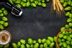 Copy Space Frame with Hops and Beer Stock Images