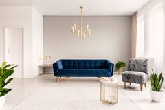 Copy space living room interior with a dark blue couch, a gray armchair and gold accents. Real photo. stock photos