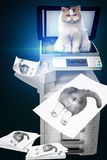 Copycat. Cat copies her on the copier royalty free stock photos