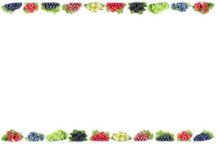 Copys della frutta delle bacche dei mirtilli dell'uva delle fragole delle bacche Fotografie Stock Libere da Diritti