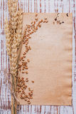Copyspace background ears of wheat and corns on Royalty Free Stock Images