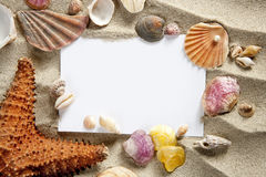 Copyspace blank space summer starfish sand shells Royalty Free Stock Photo
