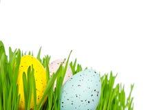 Copyspace dell'erba delle uova di Pasqua Immagine Stock Libera da Diritti
