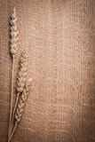 Copyspace image ears of ripe wheat on wooden board Royalty Free Stock Photography