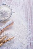 Copyspace image sieve with white natural flour Royalty Free Stock Images