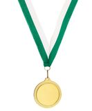 Copyspace metal medal Royalty Free Stock Photography