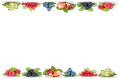 Copyspace organico delle bacche dei mirtilli delle fragole delle bacche Immagini Stock