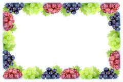 Copyspace organique frais Co de chute d'automne de cadre de fruit de fruits de raisins Photo libre de droits