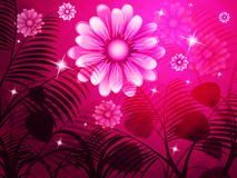 Copyspace Pink Represents Light Burst And Background Royalty Free Stock Photos