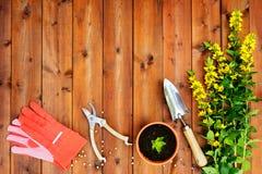 Copyspace-Rahmen mit Gartenarbeitwerkzeugen und -gegenständen auf altem hölzernem Hintergrund Stockbilder