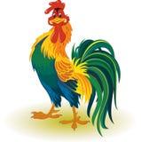Coq coloré illustration stock