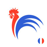 Coq français illustration stock
