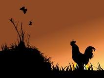 Coq, guindineau, et arbre Images stock