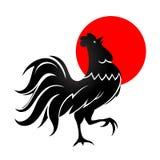 Coq noir avec le soleil de matin Image stock
